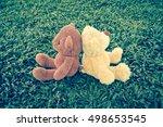 teddy bear on grass background | Shutterstock . vector #498653545