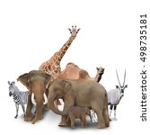 a group of animals are grouped... | Shutterstock . vector #498735181