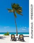 group deck chairs under an... | Shutterstock . vector #498800029