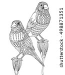 patterned finch bird zentangle  ...   Shutterstock .eps vector #498871351