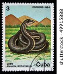 Small photo of CUBA - CIRCA 1984: A stamp printed in Cuba shows Cuban Racer - Alsophis cantherigerus, circa 1984
