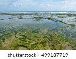 Indian Ocean Shore At Low Tide...