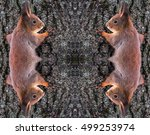 Kaleidoscopic Pattern Of...