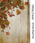 vintage autumn background with... | Shutterstock . vector #499279081