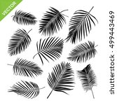 palm leaves silhouettes vector | Shutterstock .eps vector #499443469