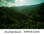 mountain landscape of... | Shutterstock . vector #499491544