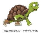 cartoon turtle in sneakers...   Shutterstock . vector #499497595
