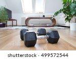 dumbbells in interior | Shutterstock . vector #499572544