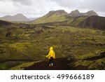 icelandic landscape  person in...   Shutterstock . vector #499666189