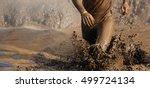 mud race runners man running in ...   Shutterstock . vector #499724134