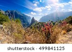 masca valley.canary island... | Shutterstock . vector #499841125
