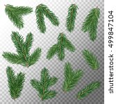 fir tree branches isolated on... | Shutterstock .eps vector #499847104
