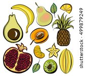 vector illustration  fruit ... | Shutterstock .eps vector #499879249