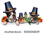 Thanksgiving Pet Celebration A...