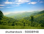 hills and mountains in costa... | Shutterstock . vector #50008948