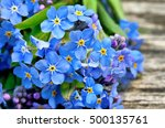 bouquet of blue forget me on a... | Shutterstock . vector #500135761