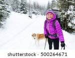 woman hiking in white winter... | Shutterstock . vector #500264671