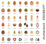 nuts and seeds vector icon set | Shutterstock .eps vector #500288197