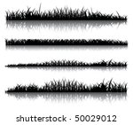 realistic dark grass on a white ... | Shutterstock . vector #50029012