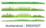realistic grass on a white... | Shutterstock . vector #50029207