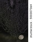 web  liguria  italy | Shutterstock . vector #500307364