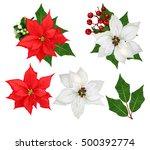 Set. Flowers Poinsettia White...