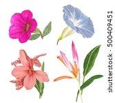 illustration of beautiful... | Shutterstock . vector #500409451