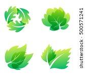 green leaf eco design element... | Shutterstock .eps vector #500571241