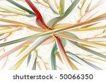 fractal abstraction   Shutterstock . vector #50066350