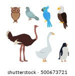 Set Of Birds Isolated. Owl Dov...