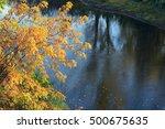 Closeup Branch Of Autumn Trees...