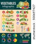 vegetables infographics design... | Shutterstock .eps vector #500697427