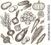 set of vegetables handdrawn... | Shutterstock .eps vector #500760331