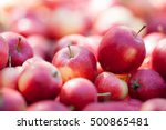 Fresh Organic Red Apples  In...
