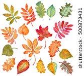 watercolor leaves set. set of... | Shutterstock . vector #500873431