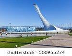 sochi  russia  january 2015 ... | Shutterstock . vector #500955274