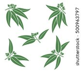 eucalyptus set. vector | Shutterstock .eps vector #500963797