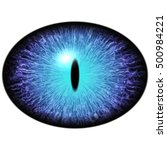 Isolated Blue Eye. Big Ellipti...
