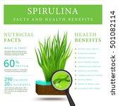 set of spirulina algae... | Shutterstock .eps vector #501082114