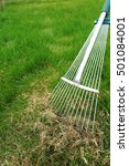 dethatching lawn with a lawn... | Shutterstock . vector #501084001