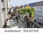 Potted Spring Flowers On A...
