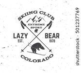 ski club concept. for badge ... | Shutterstock .eps vector #501237769