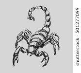 scorpio astrological zodiac... | Shutterstock .eps vector #501277099