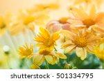 Vintage Flower Background At...
