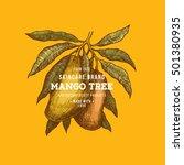 mango tree vintage design... | Shutterstock .eps vector #501380935
