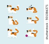 Set Of Cat Poses Vector...
