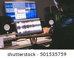 asian professional musician... | Shutterstock . vector #501535759