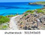 camino de caballos  cami de... | Shutterstock . vector #501545605