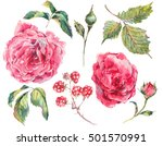 set of floral vintage... | Shutterstock . vector #501570991
