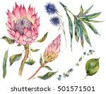 set of floral vintage... | Shutterstock . vector #501571501